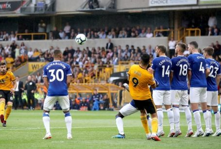 Wolves - Everton 2-2
